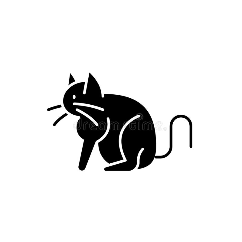 chat symbole