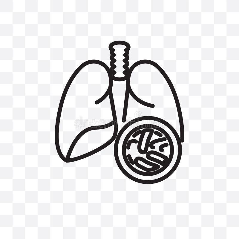 L'icône linéaire de vecteur de maladies de calcul rénal d'isolement sur le fond transparent, concept de transparent de la maladie illustration stock
