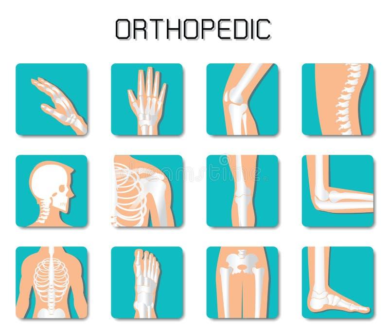 L'icona della spina dorsale ed ortopedica ha messo su fondo bianco illustrazione di stock
