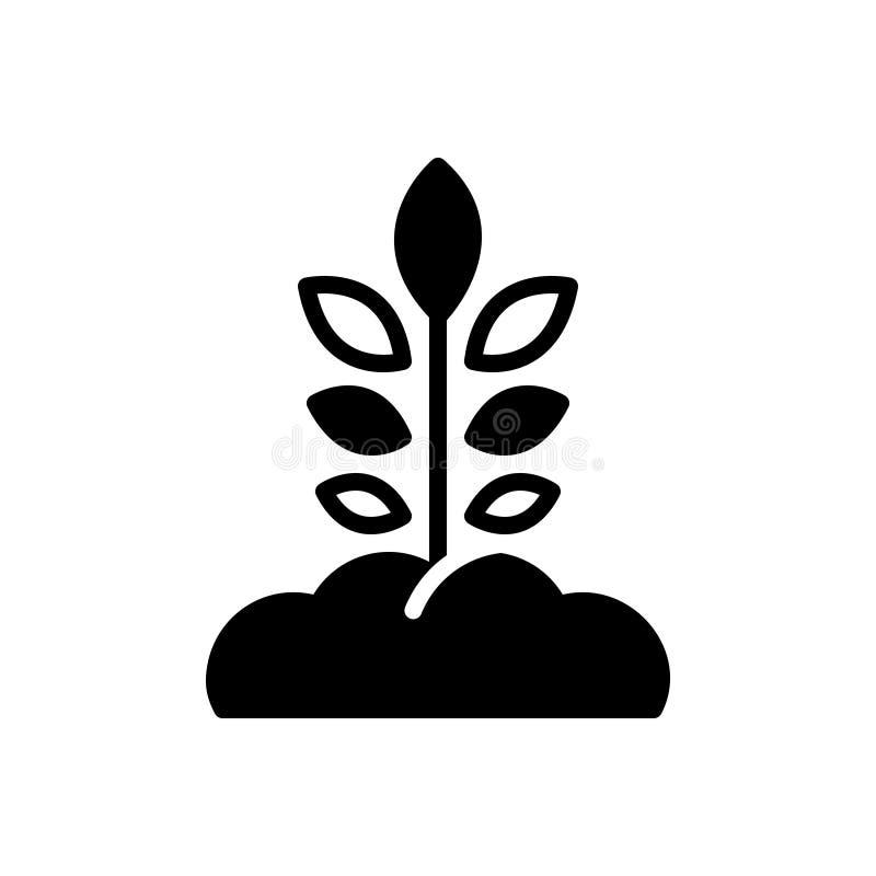 L'icona solida nera per le origini, si sviluppa ed albero illustrazione di stock