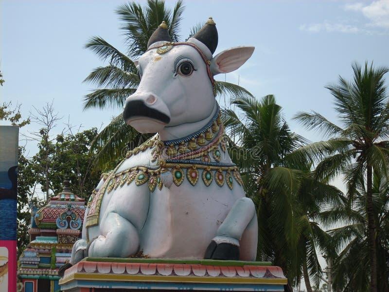 L'idole gigantesque de Nandi, Dieu de Taureau, en dehors de Shiva Temple dans l'Inde du sud photo libre de droits