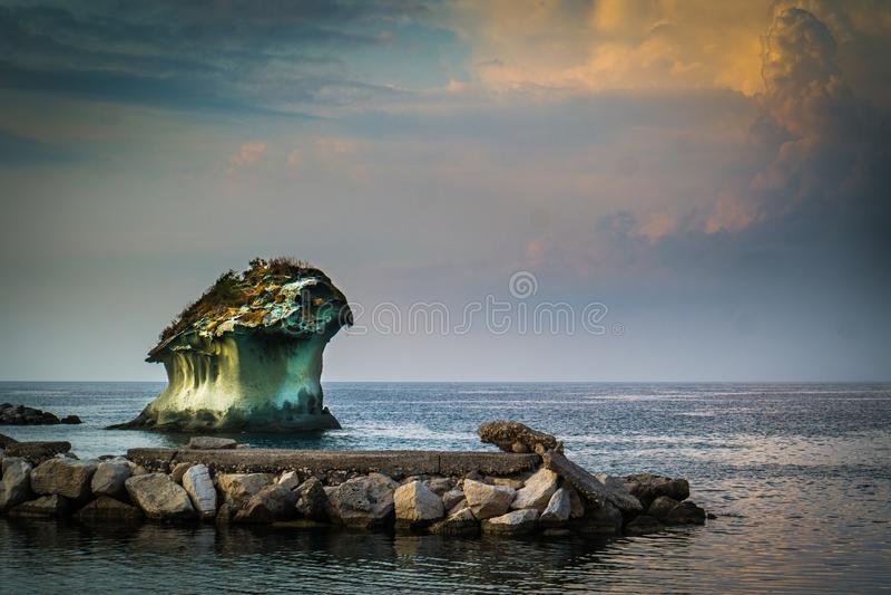 L'IL Fungo degli ischi fotografia stock libera da diritti