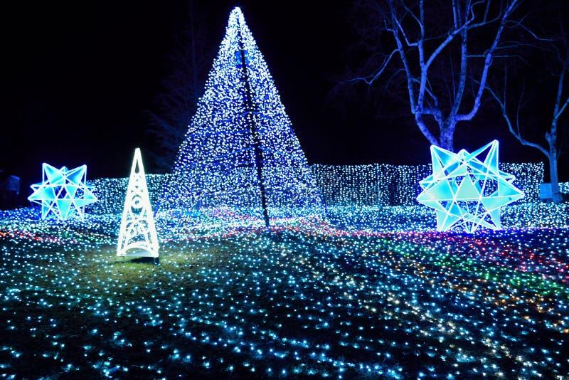 L'illuminazione dell'inverno con il LED blu accende il Giappone immagine stock