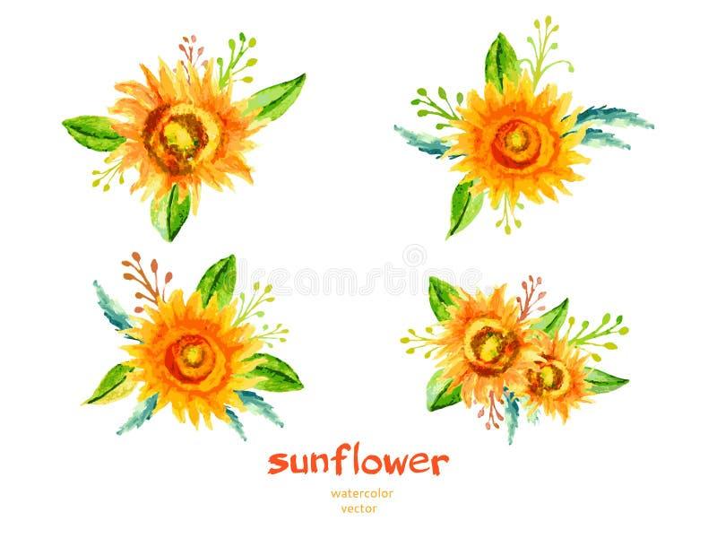 L'illustration d'aquarelle de tournesol d'isolement sur le blanc, dirigent la branche florale tirée par la main, conception décor illustration stock