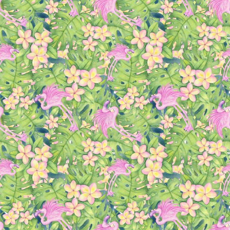 L'illustration d'aquarelle du modèle tropical, plumeria, flamant rose part du modèle de monstera Dessinant pour imprimer, style h photo libre de droits