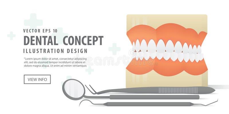 L'illustration dentaire de dentiers modèle et d'équipement de bannière dirigent o illustration de vecteur