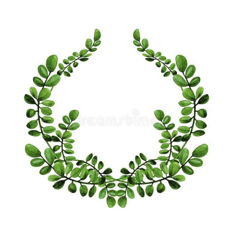 L'illustration florale d'aquarelle des branches avec les feuilles vertes tressent photo stock