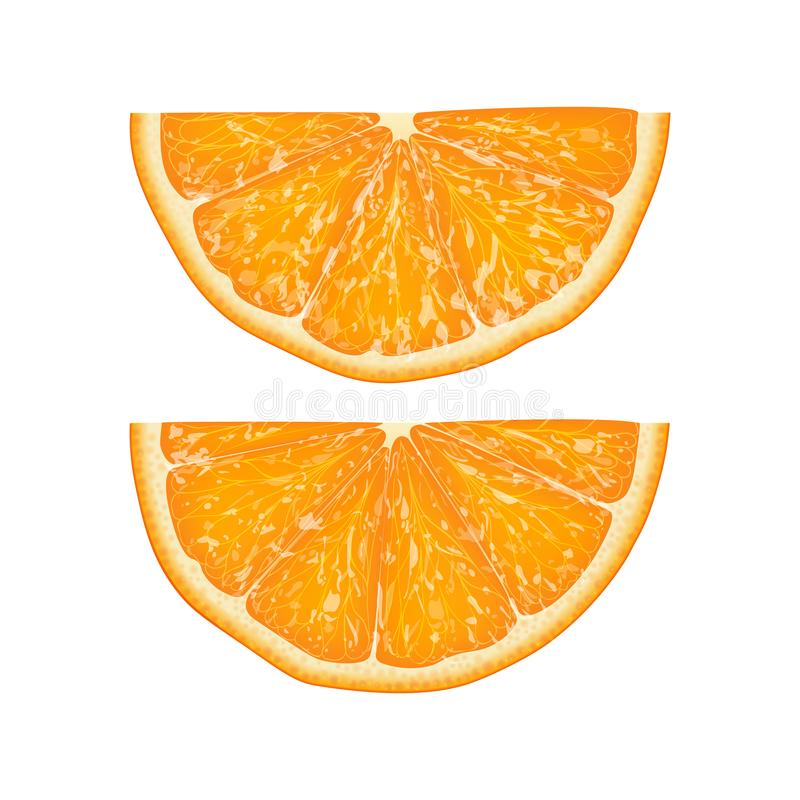 L'illustration réaliste du vecteur 3d de la moitié a coupé en tranches l'orange Colourf illustration stock