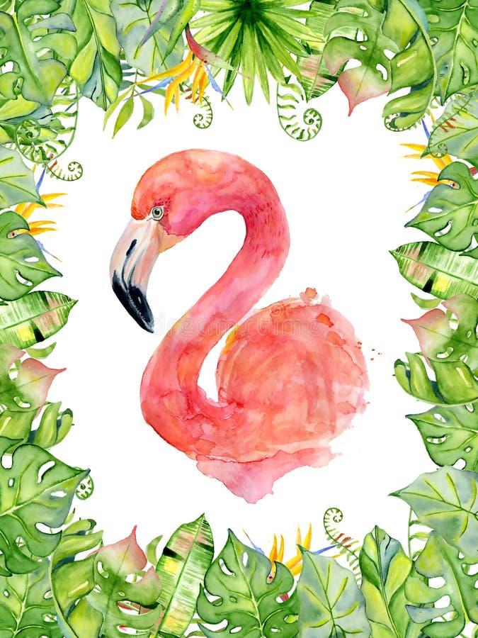 L'illustration tirée par la main d'aquarelle rose de flamant dans la disposition avec les plantes tropicales vertes, le monstera  illustration stock