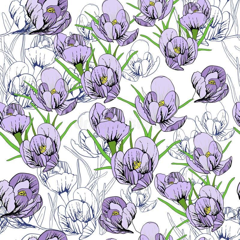 L'illustrazione dei primi bucaneve Galanthus del modello senza cuciture fiorisce Fondo, carta da parati e stampabile della primav illustrazione vettoriale