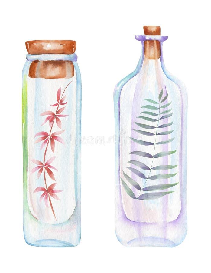 L'illustrazione romantica e le bottiglie dell'acquerello di favola con la foresta si ramifica con le foglie dentro illustrazione di stock
