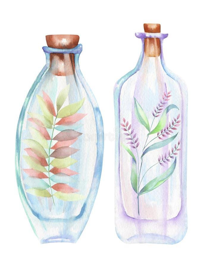 L'illustrazione romantica e le bottiglie dell'acquerello di favola con la foresta si ramifica con le foglie ed i fiori dentro royalty illustrazione gratis