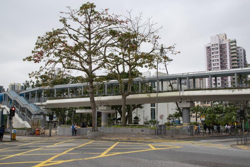 L'image à côté d'une route, pleuvant avance, avec le grands arbre et pont image stock
