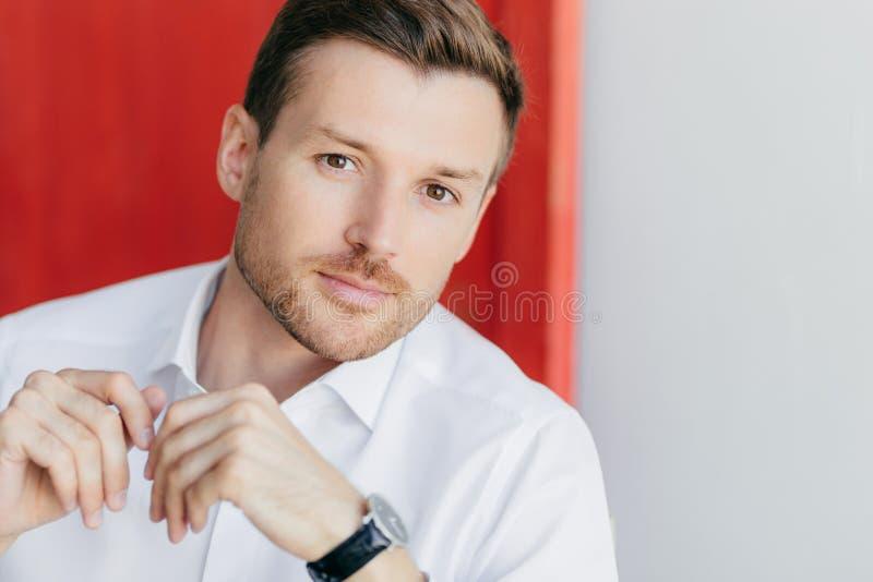 L'image de l'entrepreneur masculin plein d'assurance réfléchi dans la chemise blanche, écoute attentivement son associé au cours  images libres de droits