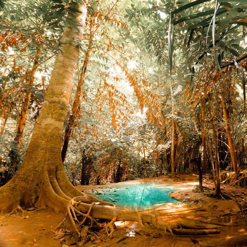 L'imagination cliquettent le paysage avec de l'eau étang de turquoise photos stock