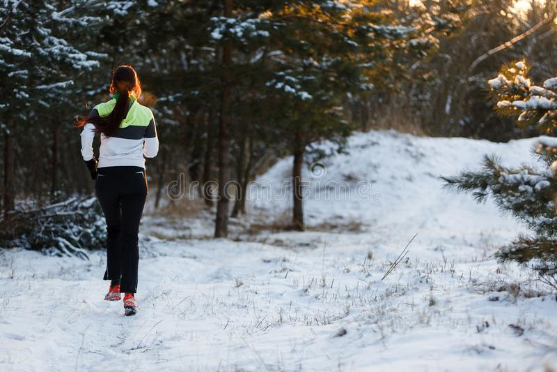 L'immagine dalla parte posteriore dell'atleta in scarpe da tennis sulla mattina funziona nella foresta dell'inverno immagini stock