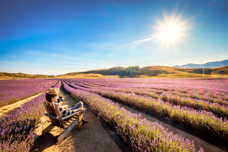 L'immagine del paesaggio di giovane turista si siede e godendo del sole all'azienda agricola della lavanda fotografia stock