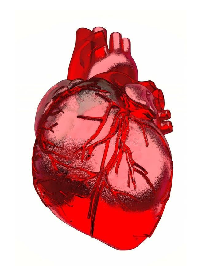 L'immagine di cuore isolata su un fondo bianco illustrazione vettoriale