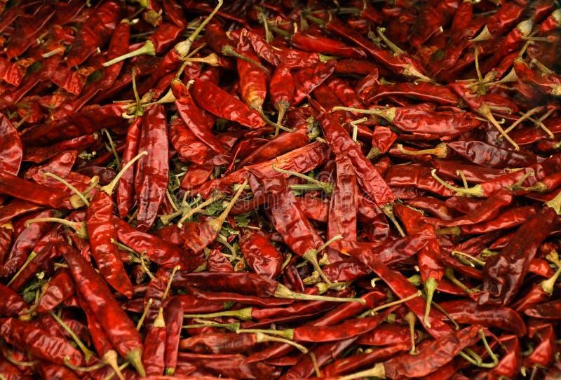 L'immagine di sfondo dell'alimento luminoso in pieno di molti peperoncini rossi asciutti innumerevoli fotografia stock libera da diritti