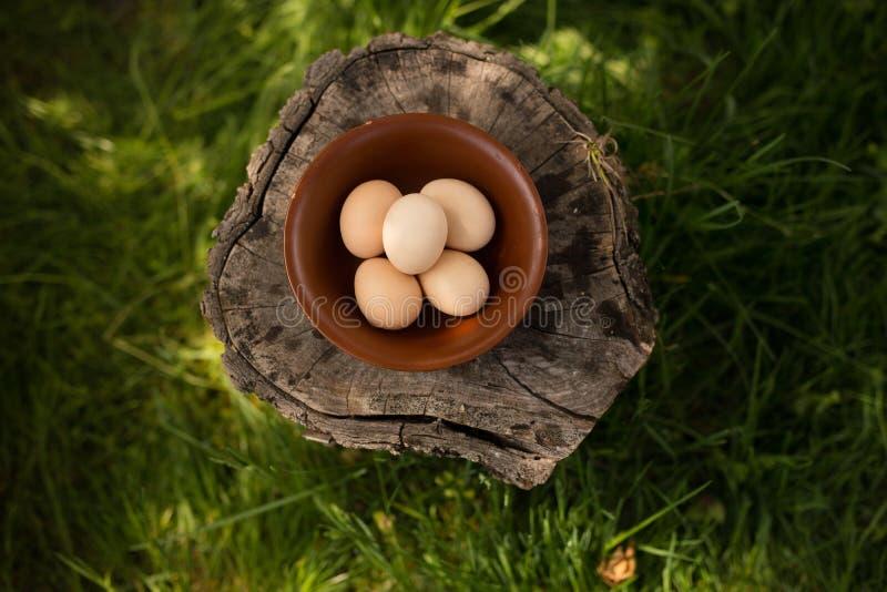 L'immagine potata delle uova crude del pollo dell'azienda agricola ha sistemato in un piatto su un tronco di legno Immagine orizz fotografie stock libere da diritti
