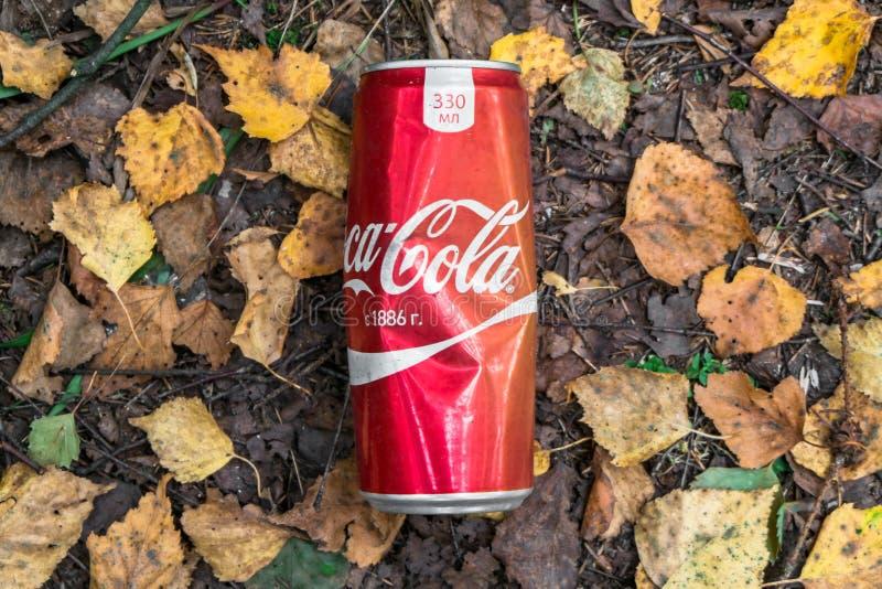 L'immondizia ha lasciato dopo un picnic nella foresta, la periferia di Mosca, Russia fotografie stock libere da diritti