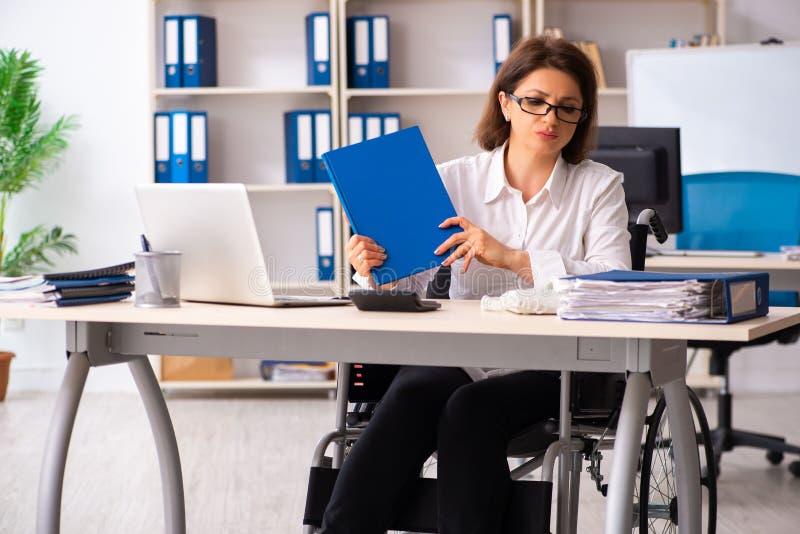 L'impiegato femminile in sedia a rotelle all'ufficio immagini stock
