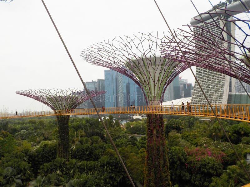 L'impressionnant, suspendu dans le ciel fait du jardinage par la baie, Singapour photographie stock