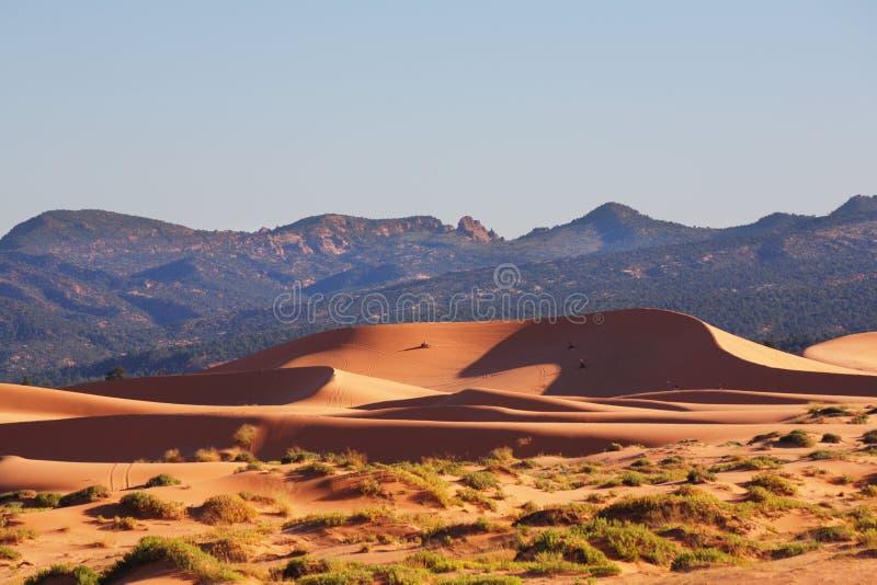L'incandescenza arancione della sabbia al sole fotografia stock