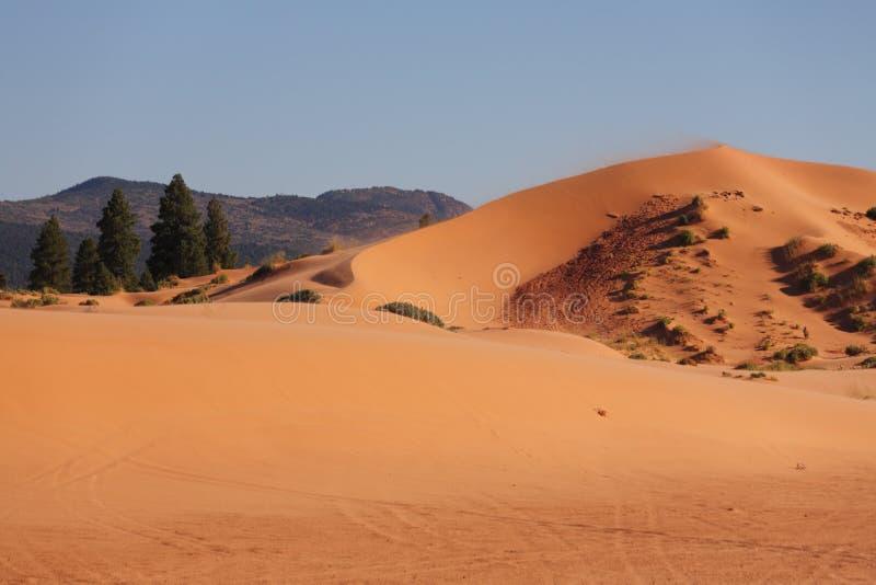 L'incandescenza della sabbia immagine stock libera da diritti