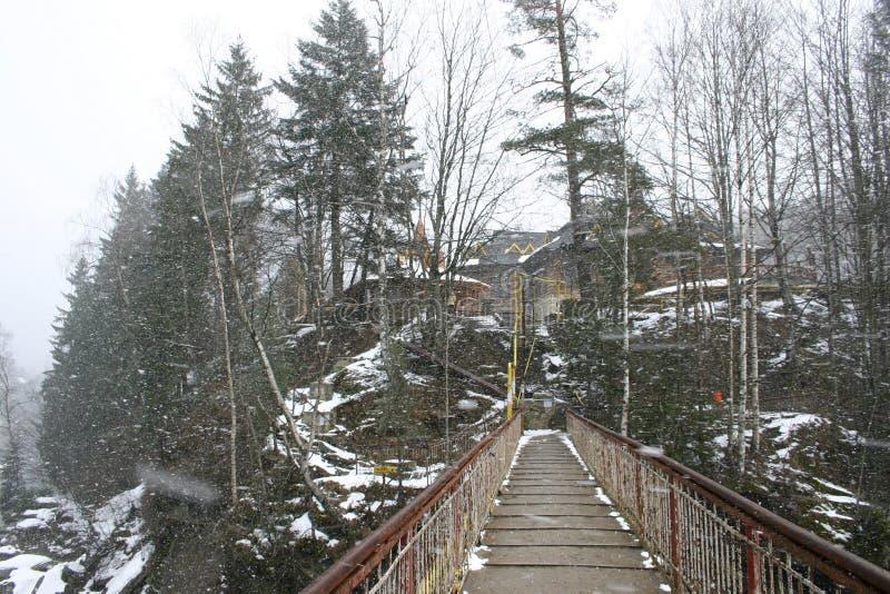 L'incanto dell'inverno Carpathians fotografie stock