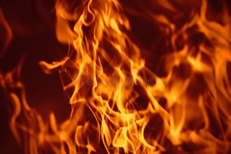 l'incendie de fond flambe le grand dos orange photo libre de droits