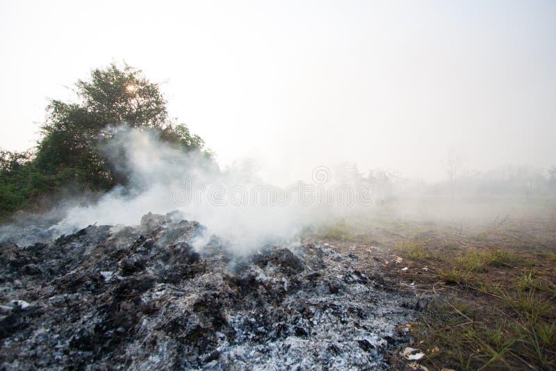 L'incendio violento o l'incendio forestale nella natura, pompieri combatterà il fuoco immagini stock