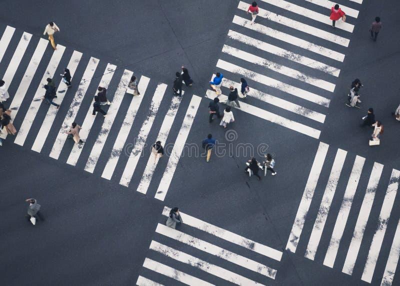 L'incrocio di camminata della gente firma la diversità del sociale della città di vista superiore della via immagini stock