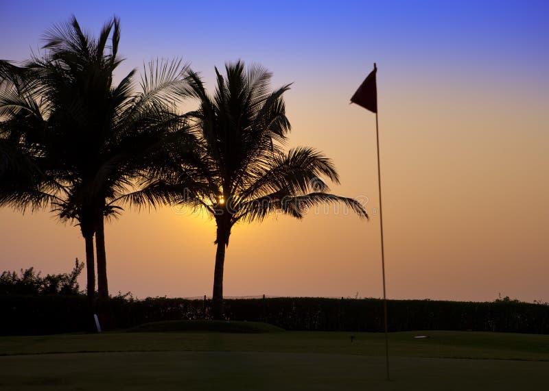 l'Inde goa Un coucher du soleil au-dessus des palmiers et des étiquettes sur le terrain de golf images libres de droits