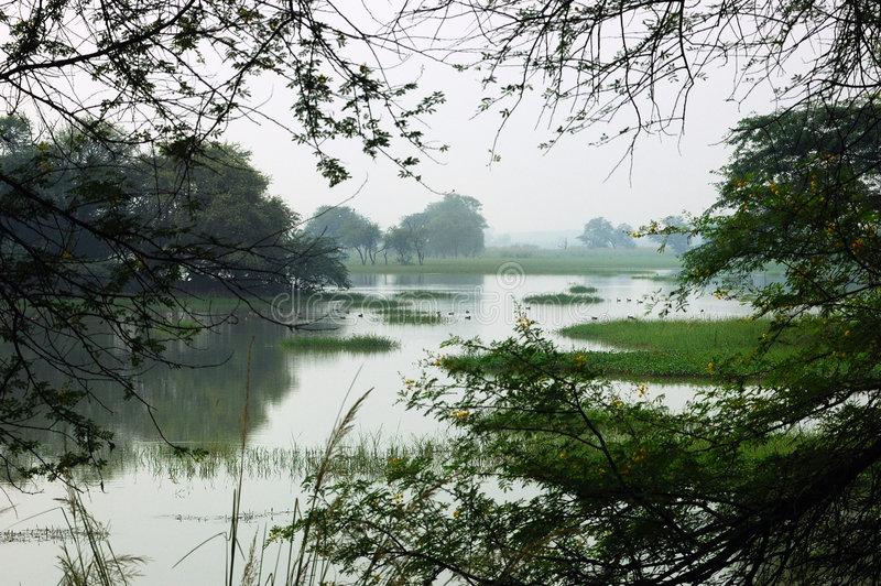 l'Inde Sultanpur photo libre de droits