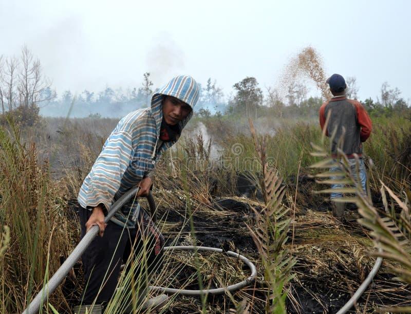 L'Indonésie hize images stock