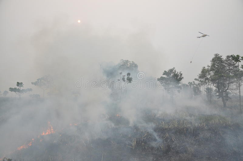 L'Indonesia hize fotografia stock