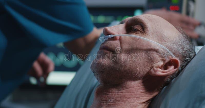 L'infermiere che dispone la cannula nasale nei pazienti fiuta immagine stock libera da diritti