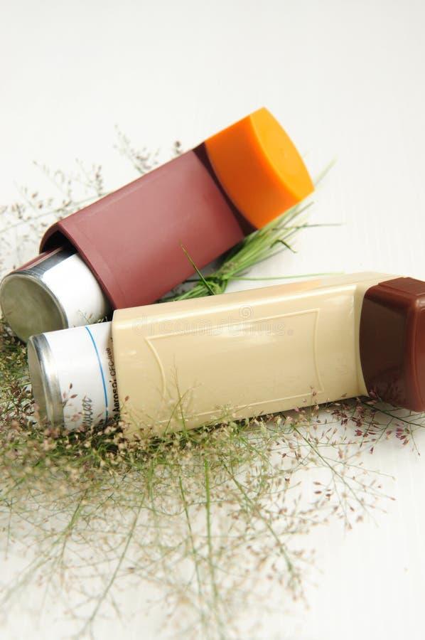 L'inhalateur et l'herbe d'asthme fleurissent sur le fond blanc images stock