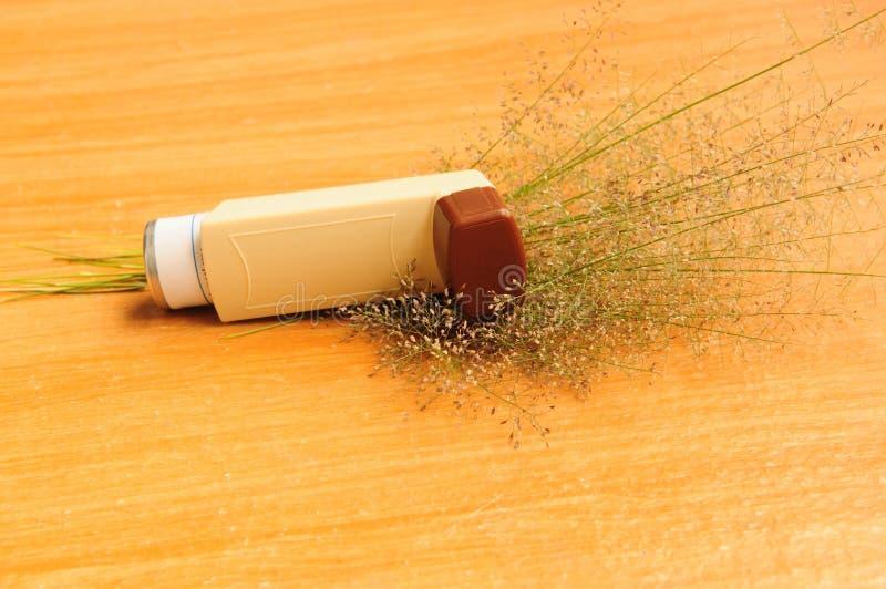 L'inhalateur et l'herbe d'asthme fleurissent sur le fond blanc photos stock