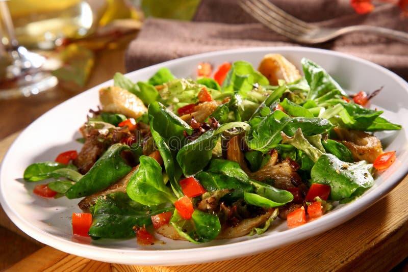 L'insalata fresca di caduta con re saporito Oyster si espande rapidamente fotografia stock libera da diritti