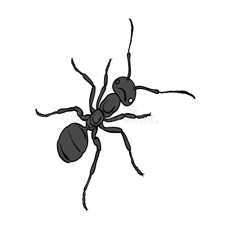 L'insecte hyménoptère est une fourmi Icône simple de fourmi animale d'arthropode en stock monochrome de symbole de vecteur de sty illustration libre de droits