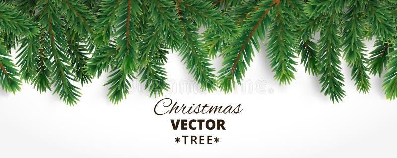 L'insegna con l'albero di Natale di vettore si ramifica e spazio per testo r illustrazione vettoriale