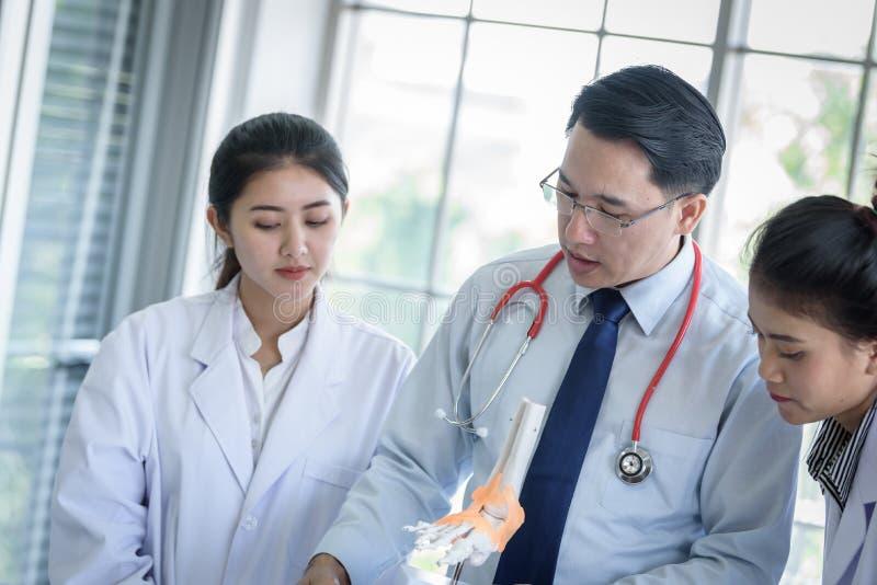 L'insegnante ha insegnamento allo studente circa scienza ed anatomico asiatici in laboratorio immagine stock