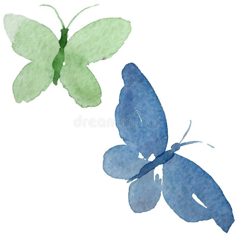 L'insetto dell'offerta della farfalla dell'acquerello, lepidottero intresting, ha isolato l'illustrazione dell'ala illustrazione vettoriale