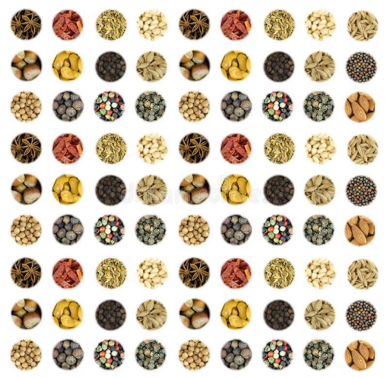 L'insieme culinario del modello un la serie di icone rotonde delle spezie basa l'anice stellato asciutto basso verticale del cori fotografia stock libera da diritti