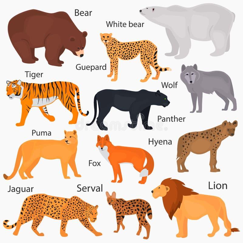 L'insieme dei predatori selvaggi con i loro nomi colora le icone piane illustrazione di stock