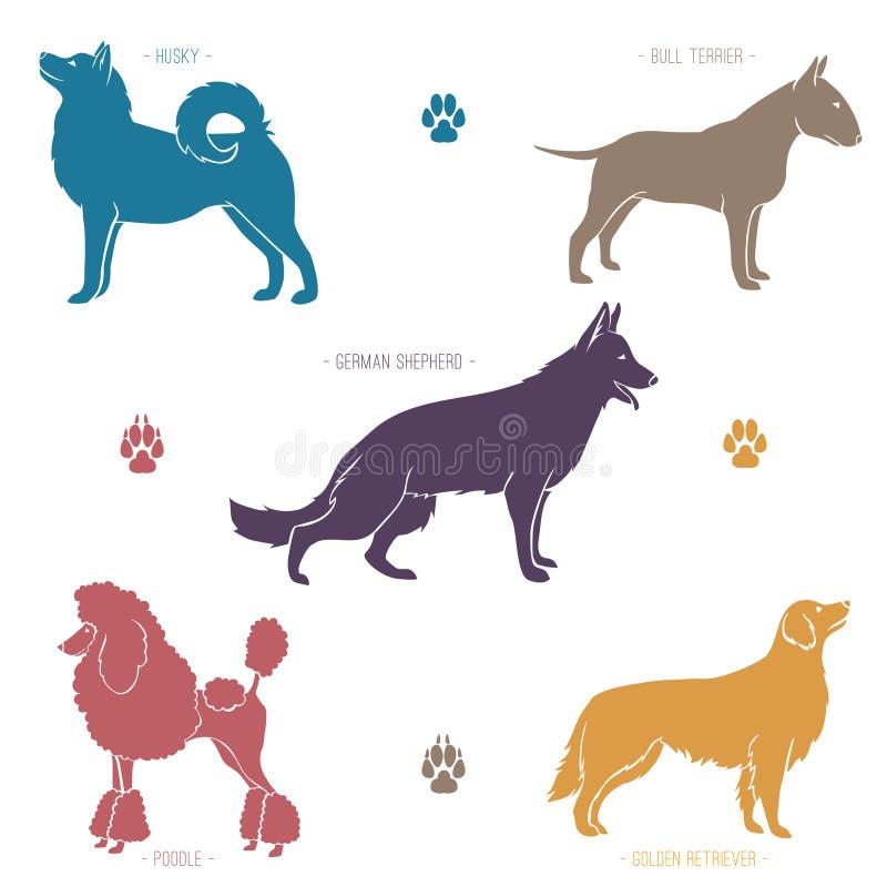 L'insieme del cane differente cresce siluette illustrazione di stock