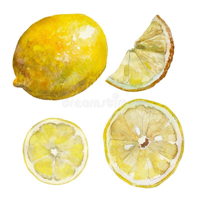 L'insieme del limone affettato isolato su fondo bianco, illustrazione dell'acquerello illustrazione di stock