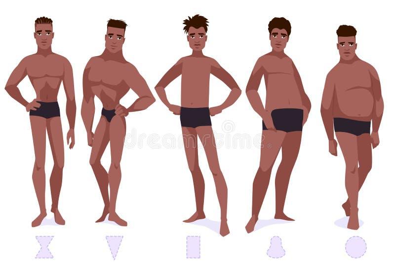 L'insieme di forma del corpo maschio scrive - cinque tipi royalty illustrazione gratis